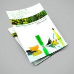 Разработка дизайна листовки