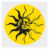 Разработка html5-баннера для 'Дивайн Лайт'